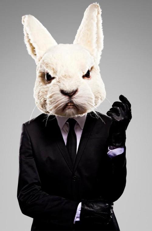 MISFITS 4 - Rabbit